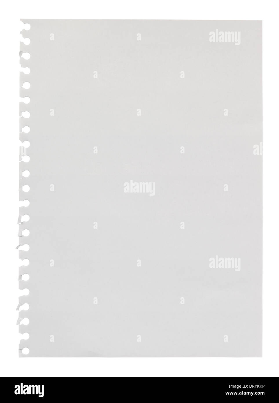 Página en blanco roto de un anillo enlazado scrapbook para utilizar como un elemento de diseño con espacio vacío su propio mensaje personalizado Imagen De Stock