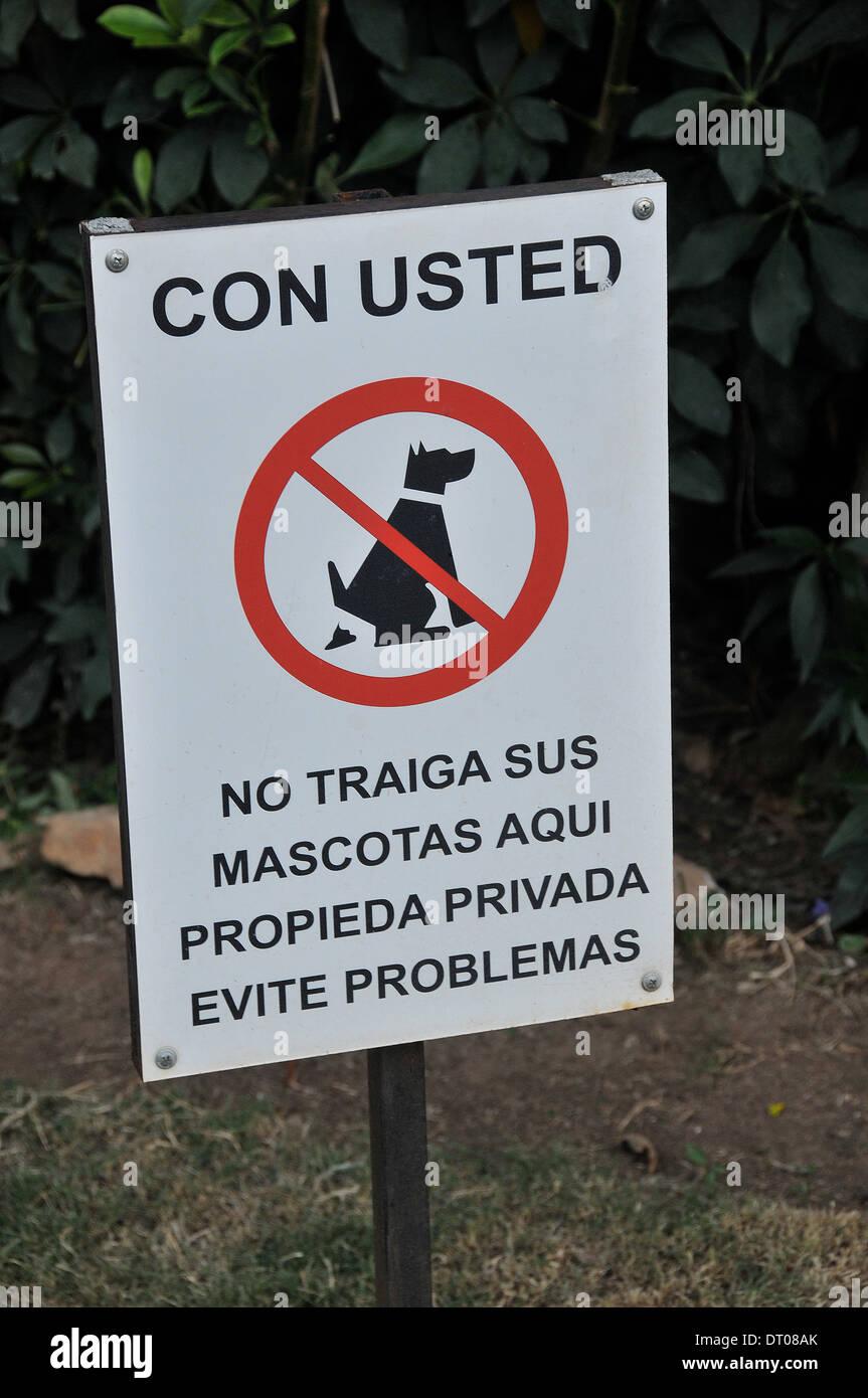 Ningún perro desánimo firmar Panamá, Ciudad de Panamá Imagen De Stock