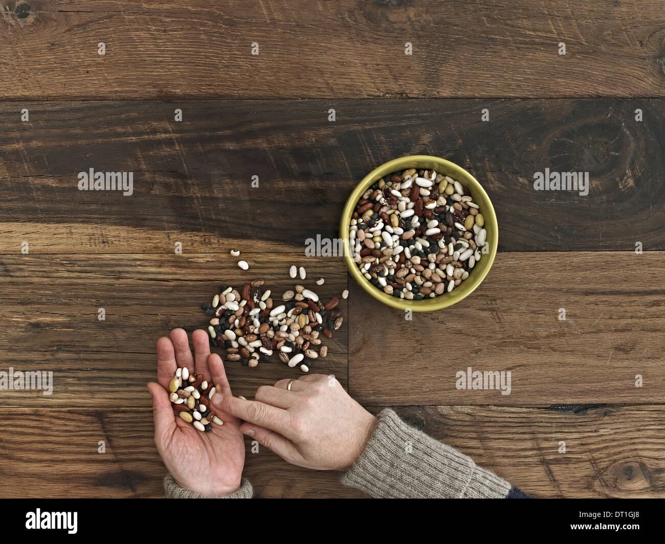 Una persona ordenar diferentes tipos de frijoles y legumbres en sus manos sobre una mesa de madera arriba Imagen De Stock