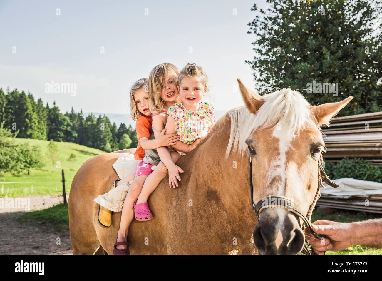 Tres jóvenes sentados en el caballo palomino Foto de stock