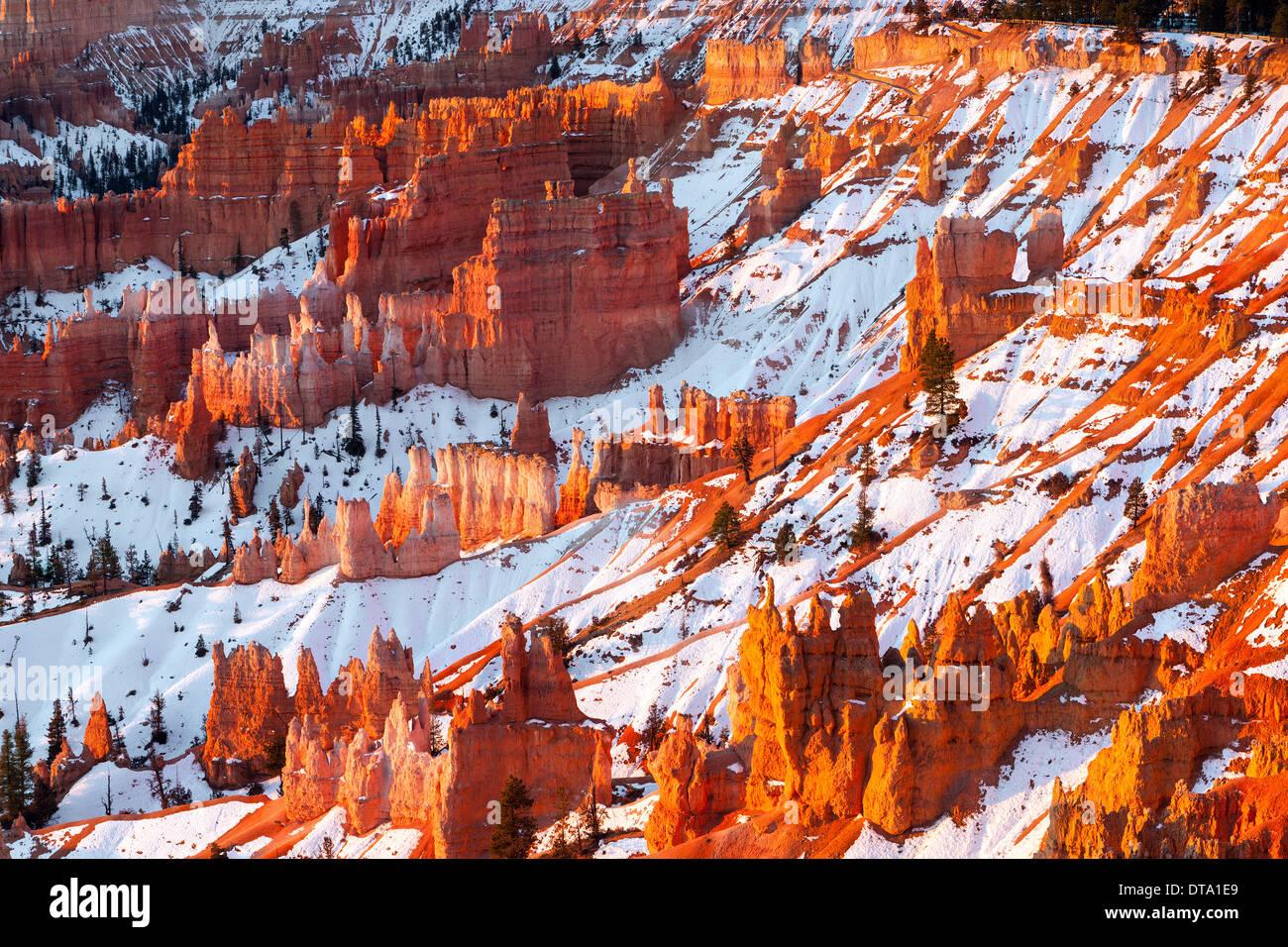 Amanecer de invierno en el Parque Nacional de Bryce Canyon, Utah, EE.UU. Imagen De Stock