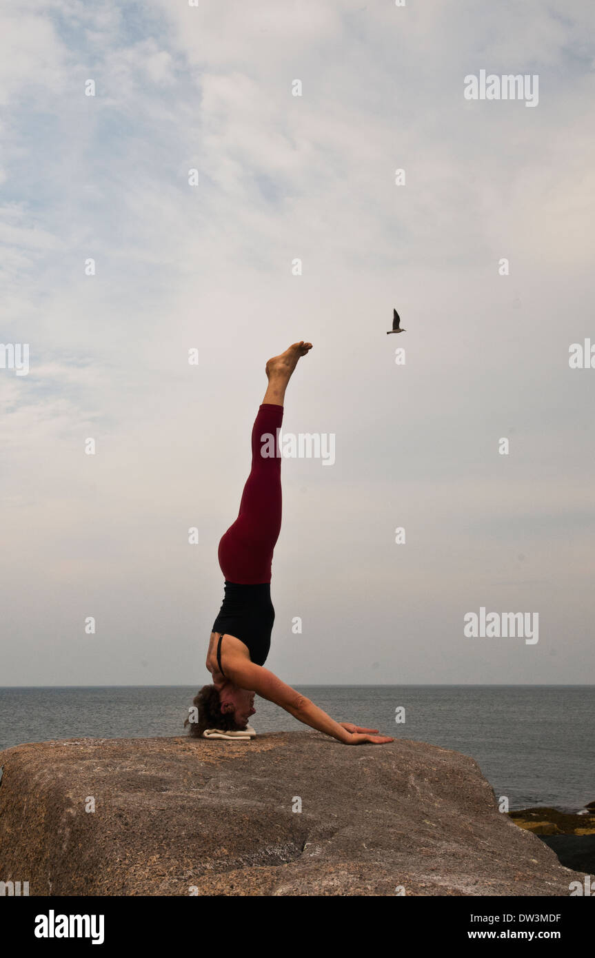 Iyengar Yoga Instructor demuestra Sirsasana MuktaHasta (invertida) Imagen De Stock