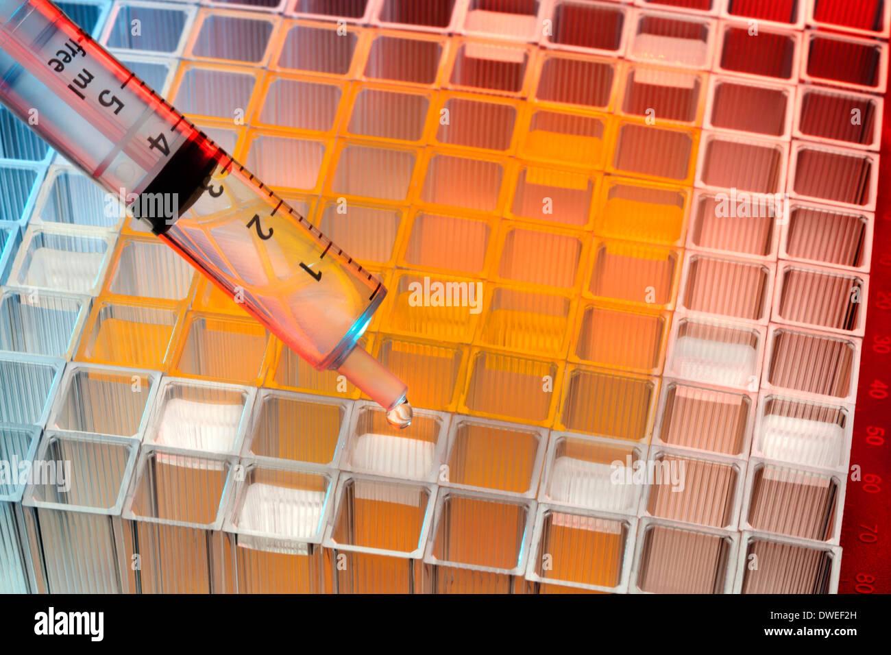 Ensayo de muestras microbiológicas en un laboratorio de patología del hospital. Imagen De Stock