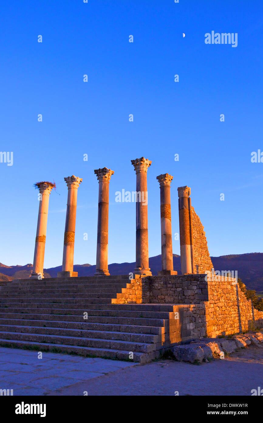 Excavada ciudad romana de Volubilis, Sitio del Patrimonio Mundial de la UNESCO, Marruecos, Norte de África, África Imagen De Stock