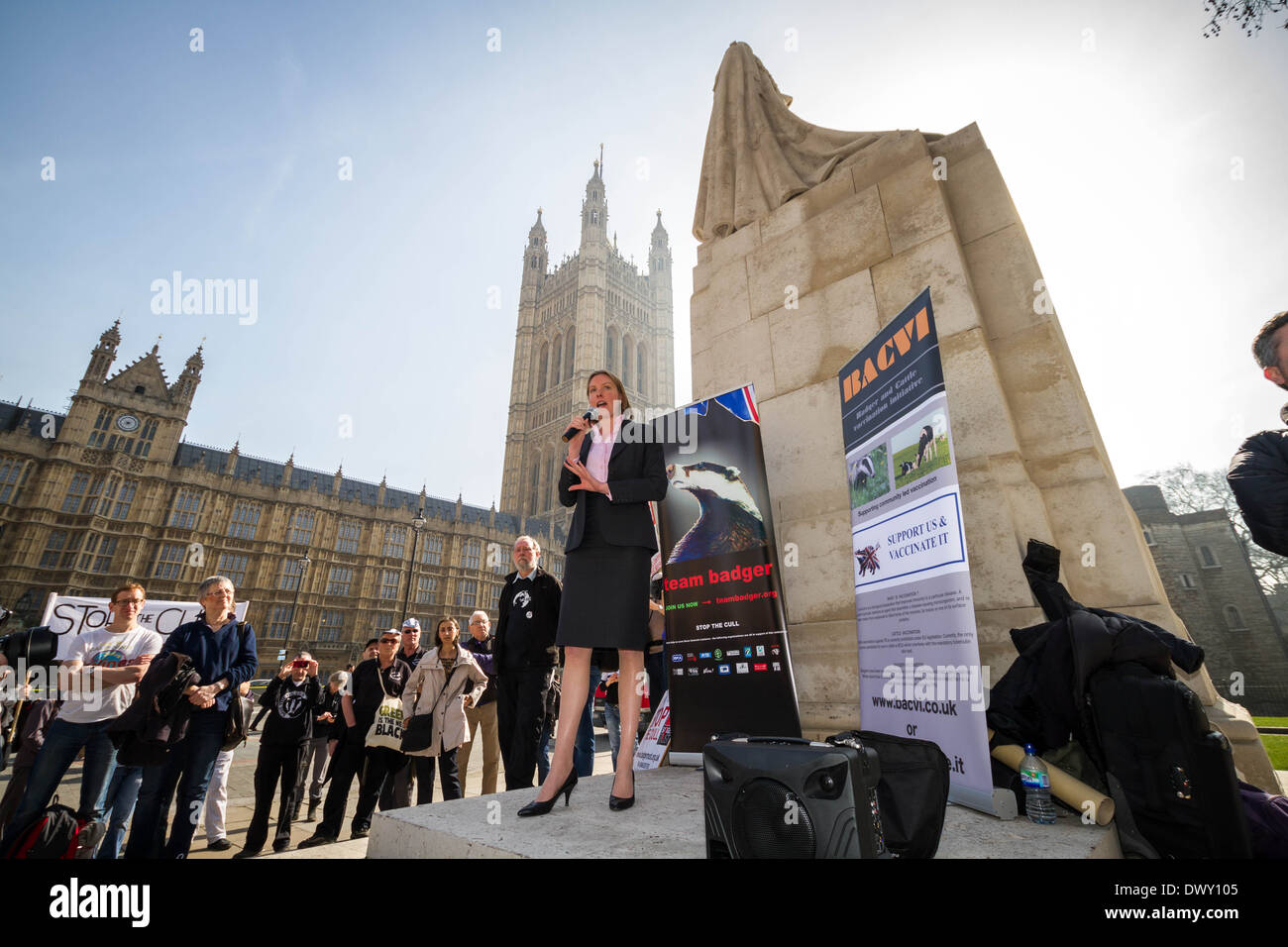 Tracey Crouch, conservador MP de Chatham y Aylesford, habla en el British Badger Cull protesta fuera del Parlamento en Londres Imagen De Stock