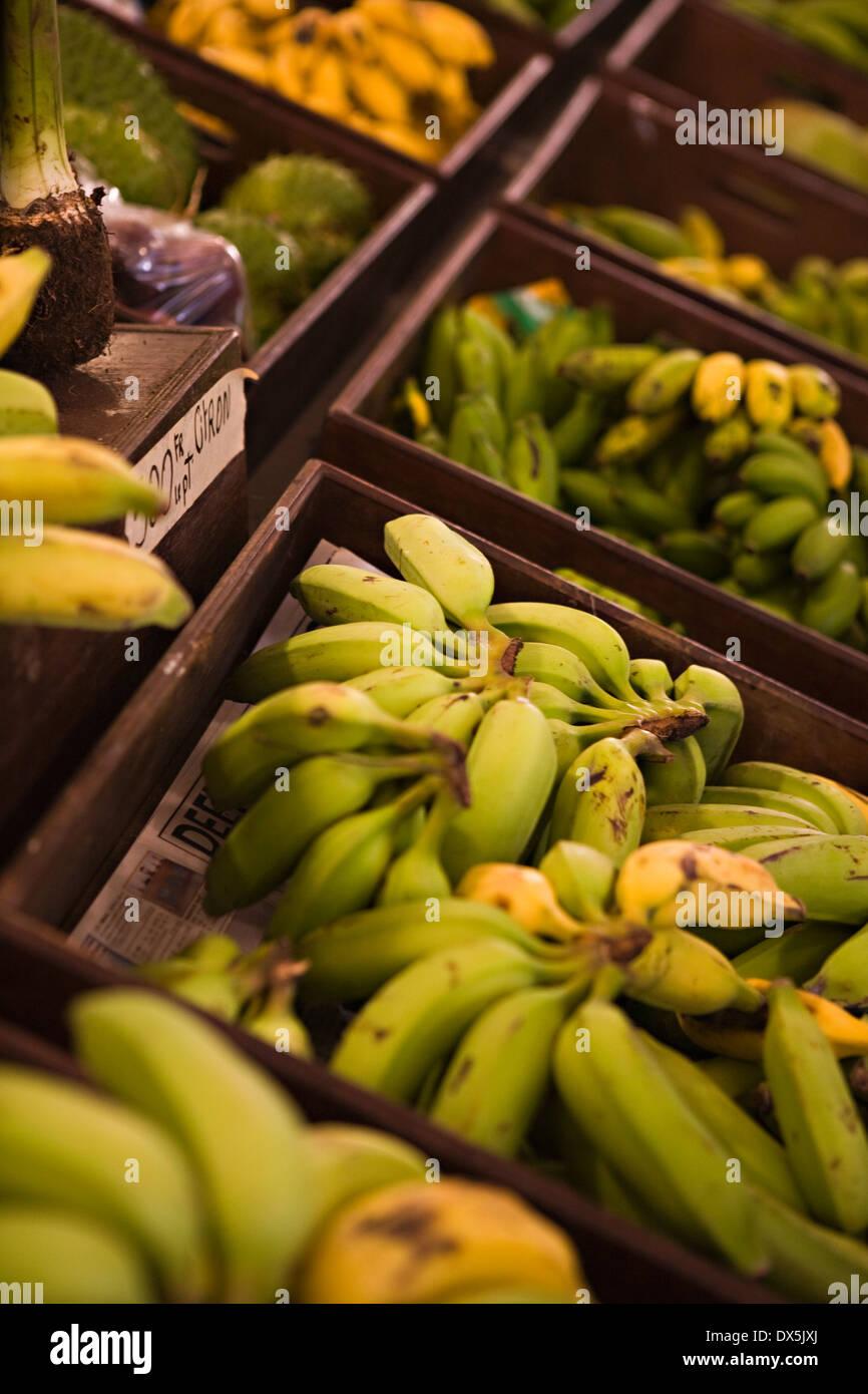 Los racimos de banano en exhibición en el mercado, un alto ángulo de visualización Imagen De Stock