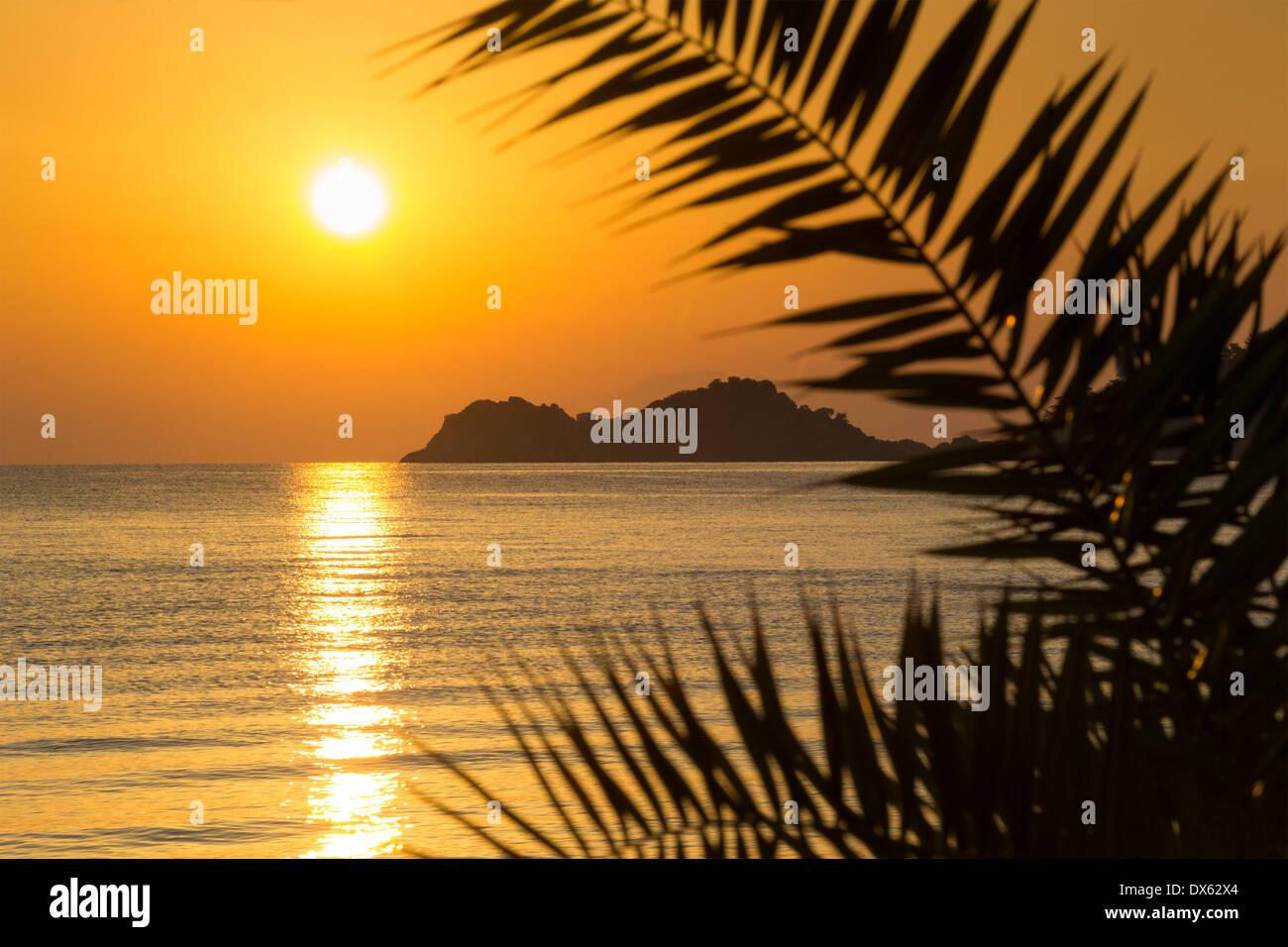 Hermoso amanecer dorado en una isla griega, enmarcadas por hojas de ...