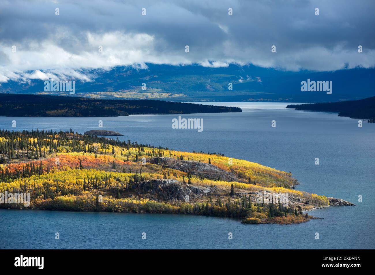 Isla de Bove, Tagish el lago, los Territorios del Yukón, Canadá Foto de stock