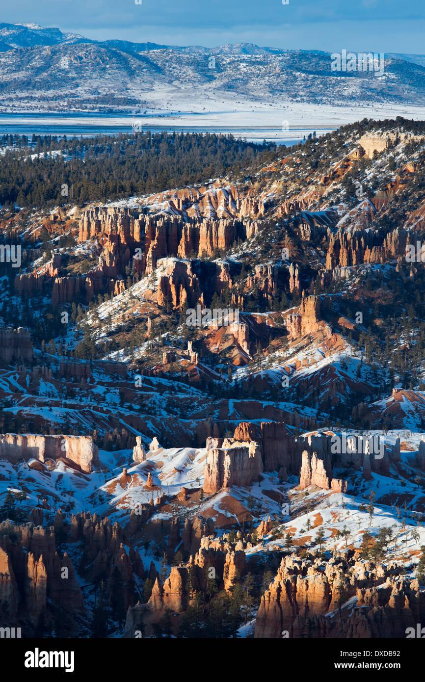 La última luz sobre la Hoodoos de Bryce Canyon, Utah, EE.UU. Foto de stock