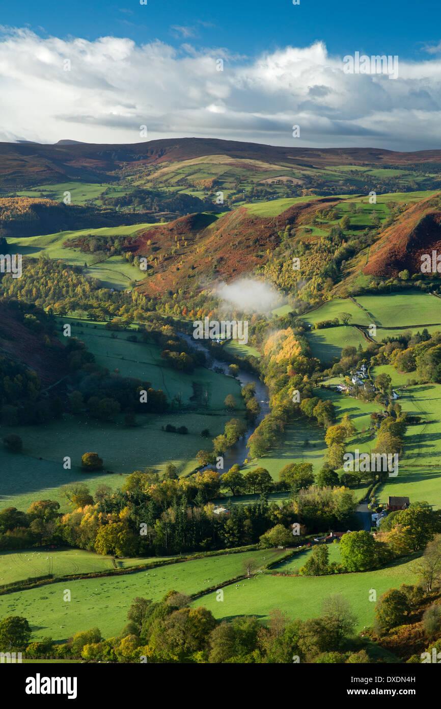 Los colores de otoño y niebla en el Dee Valley (Dyffryn Dyfrdwy) cerca de Llangollen, Denbighshire, Gales Foto de stock