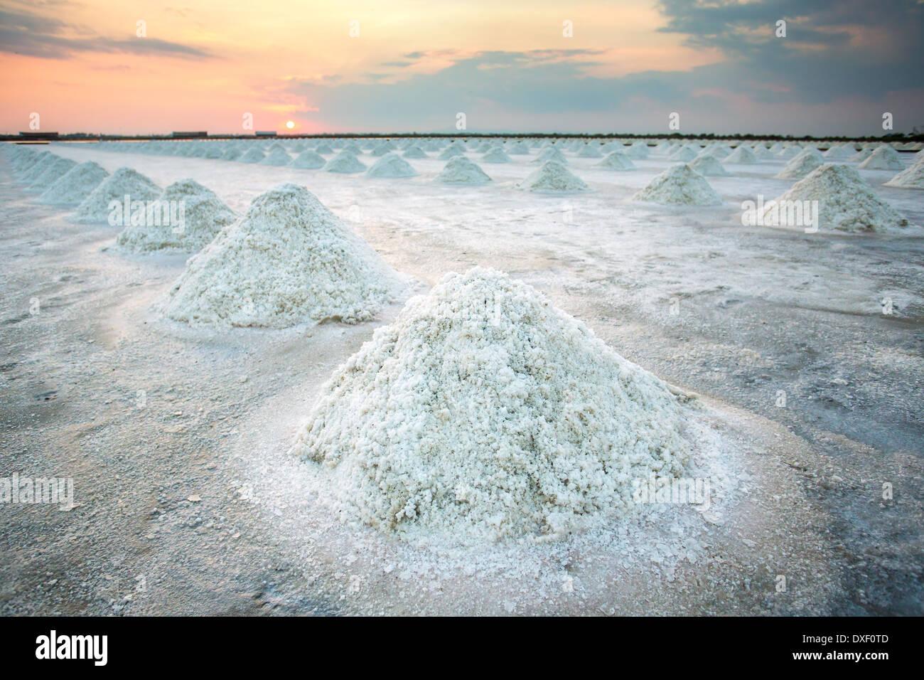 Los montones de sal en la superficie del lago de sal, Tailandia Imagen De Stock