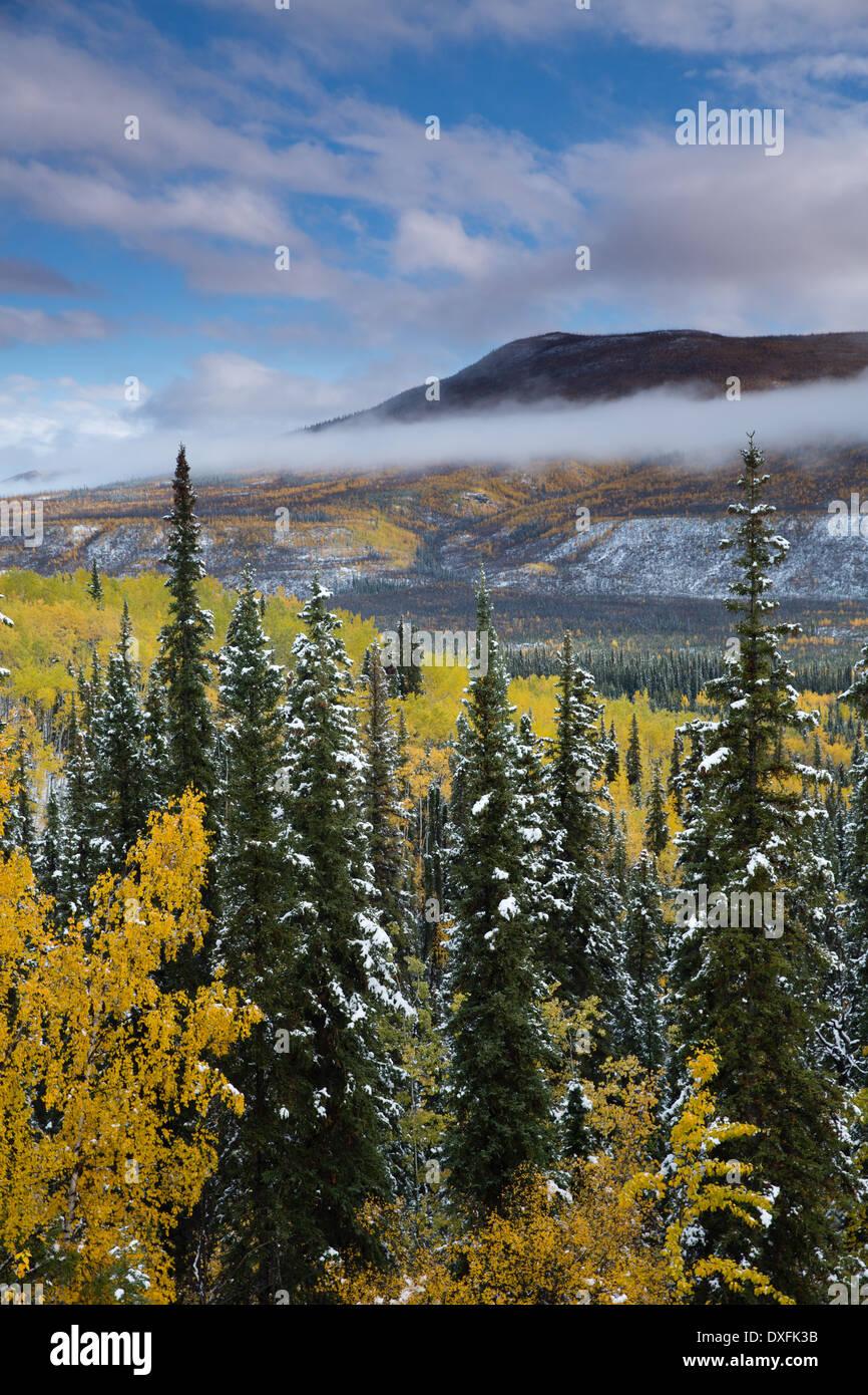 Los colores de otoño y las primeras nieves en el valle del río Stewart, los Territorios del Yukón, Canadá Imagen De Stock