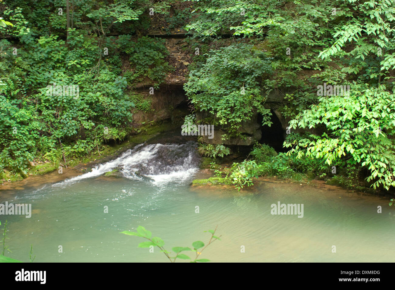 Natural Source Of Power Imágenes De Stock & Natural Source Of Power ...
