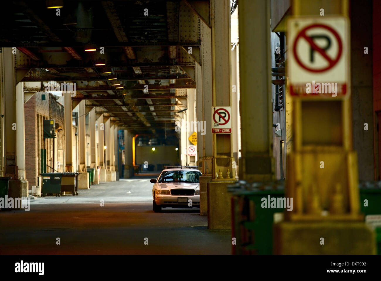 Chicago, IL : A Chicago alley photo, picture, image