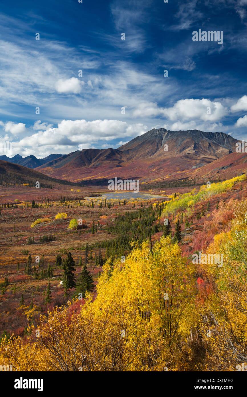 Los colores de otoño y la Catedral de la montaña, Parque Territorial de desecho, los Territorios del Yukón, Canadá Imagen De Stock