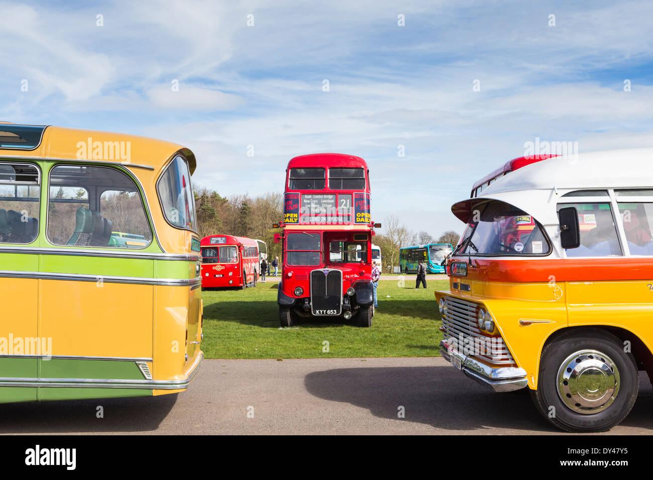Vintage buses en la visualización de vehículos del patrimonio Imagen De Stock