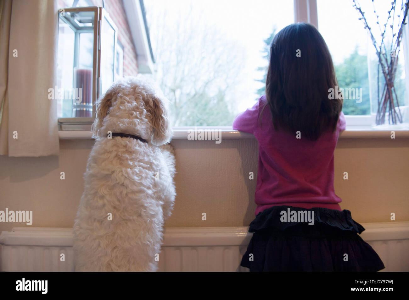 Chica y su perro mascota de pie y mirando hacia afuera de la ventana Imagen De Stock