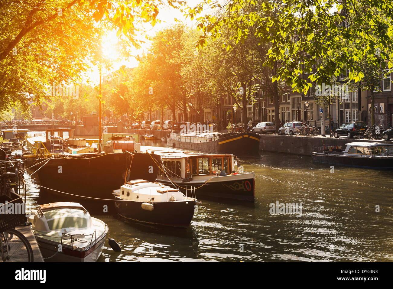 Canal soleadas, Amsterdam, Países Bajos, Europa Imagen De Stock