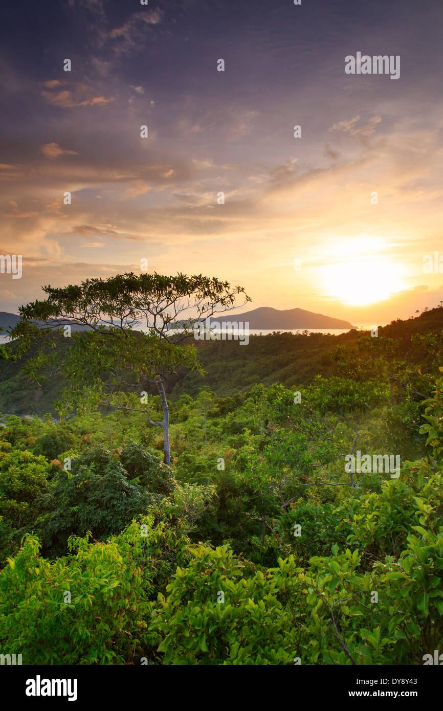 Filipinas, Palawan, Port Barton, vista elevada de la isla y sus alrededores islotes Albaguen Foto de stock