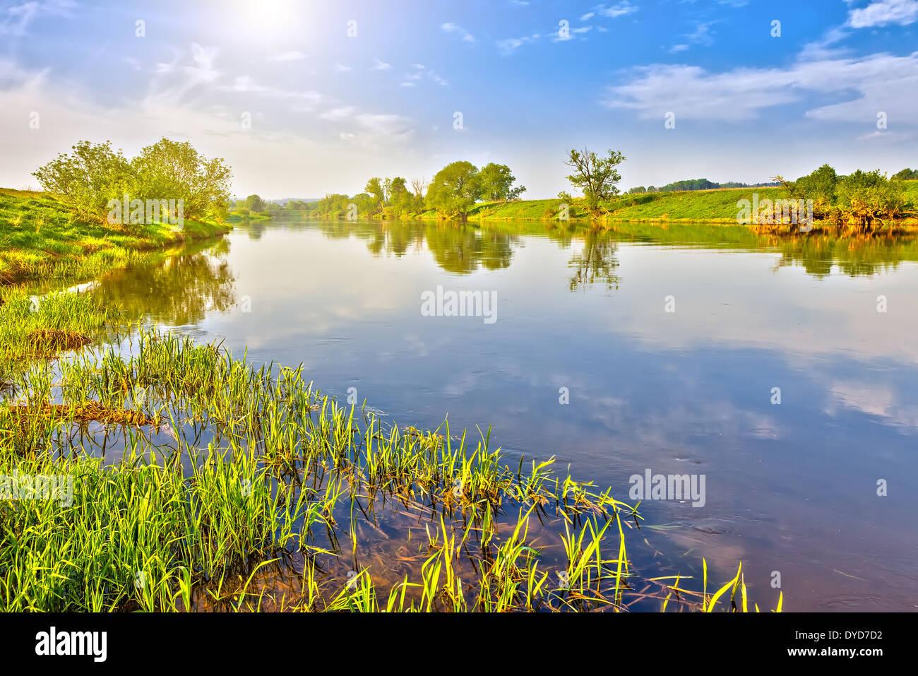 Paisaje de verano Imagen De Stock