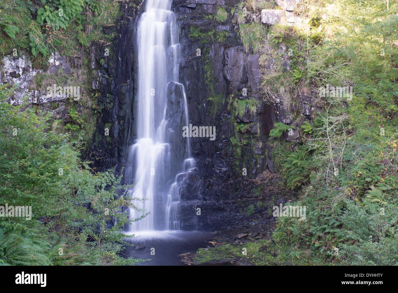 Glenashdale cae una cascada con cascada de agua en paseo de bosque Imagen De Stock
