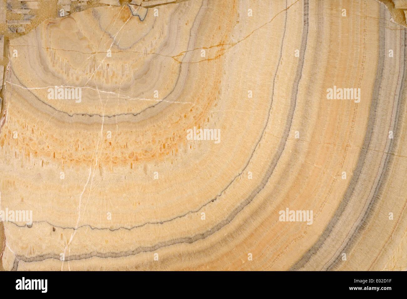 Las texturas de la piedra natural para el diseño Imagen De Stock