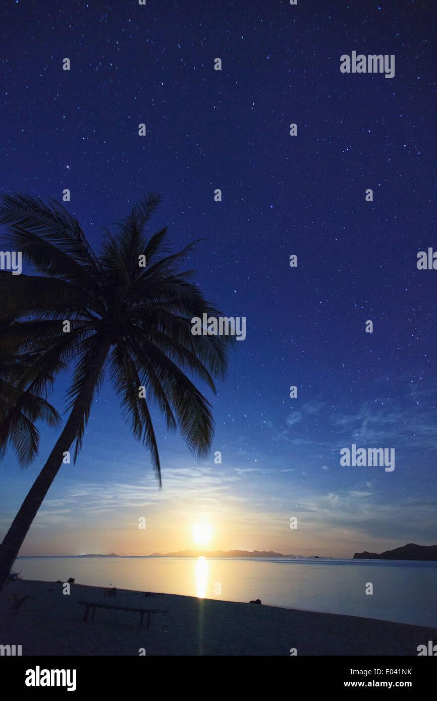 Filipinas, Palawan, Daracoton Isla, Vía Láctea y la playa Foto de stock