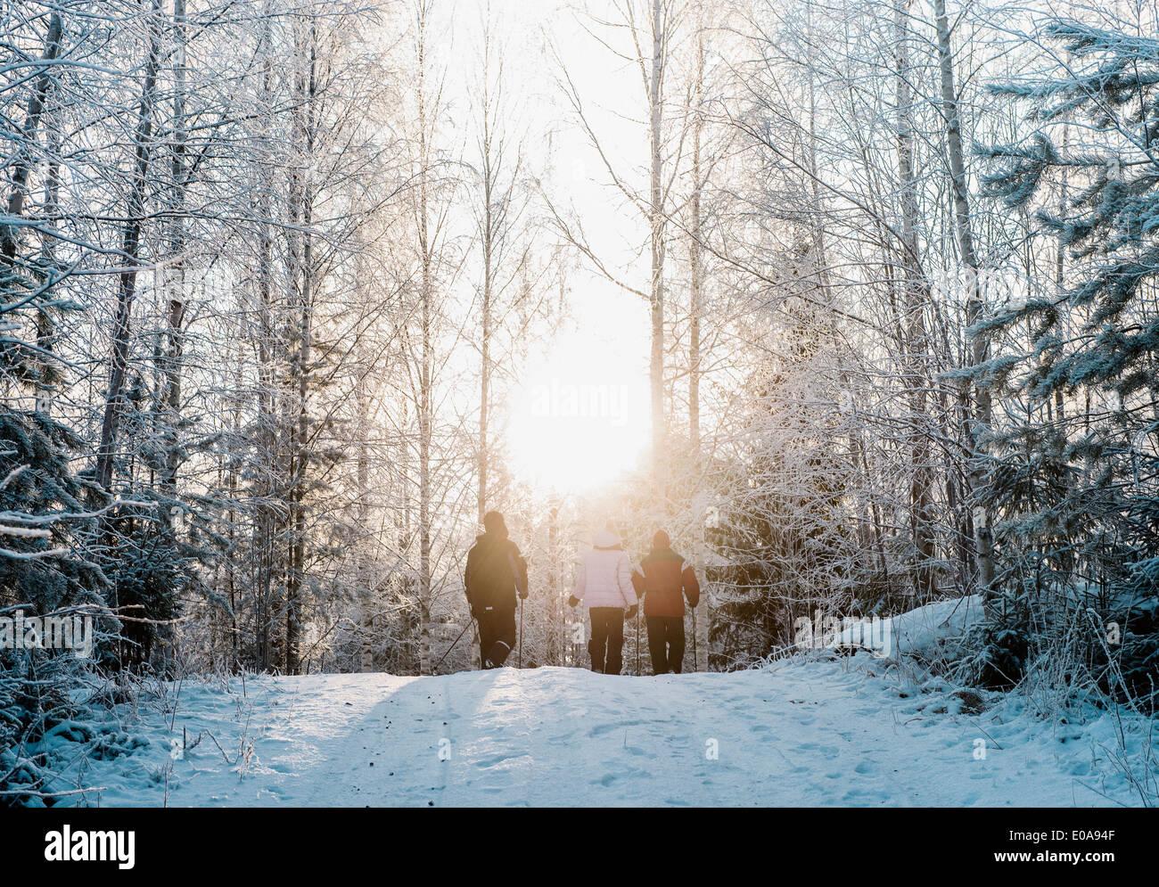Tres personas nordic walking en el bosque cubierto de nieve Imagen De Stock