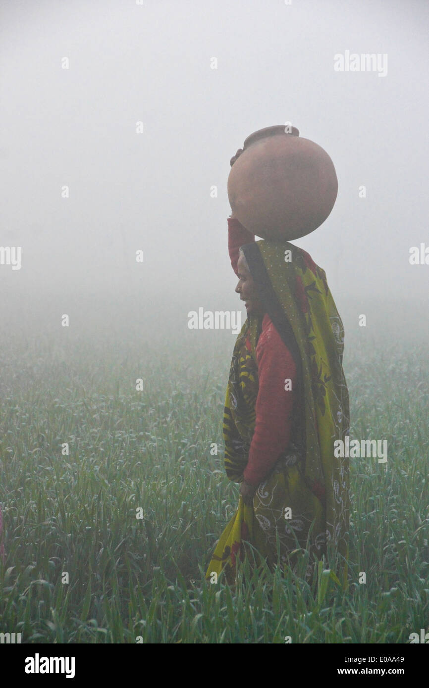 Mujer de sari llevando agua en una mañana neblinosa en India Foto de stock
