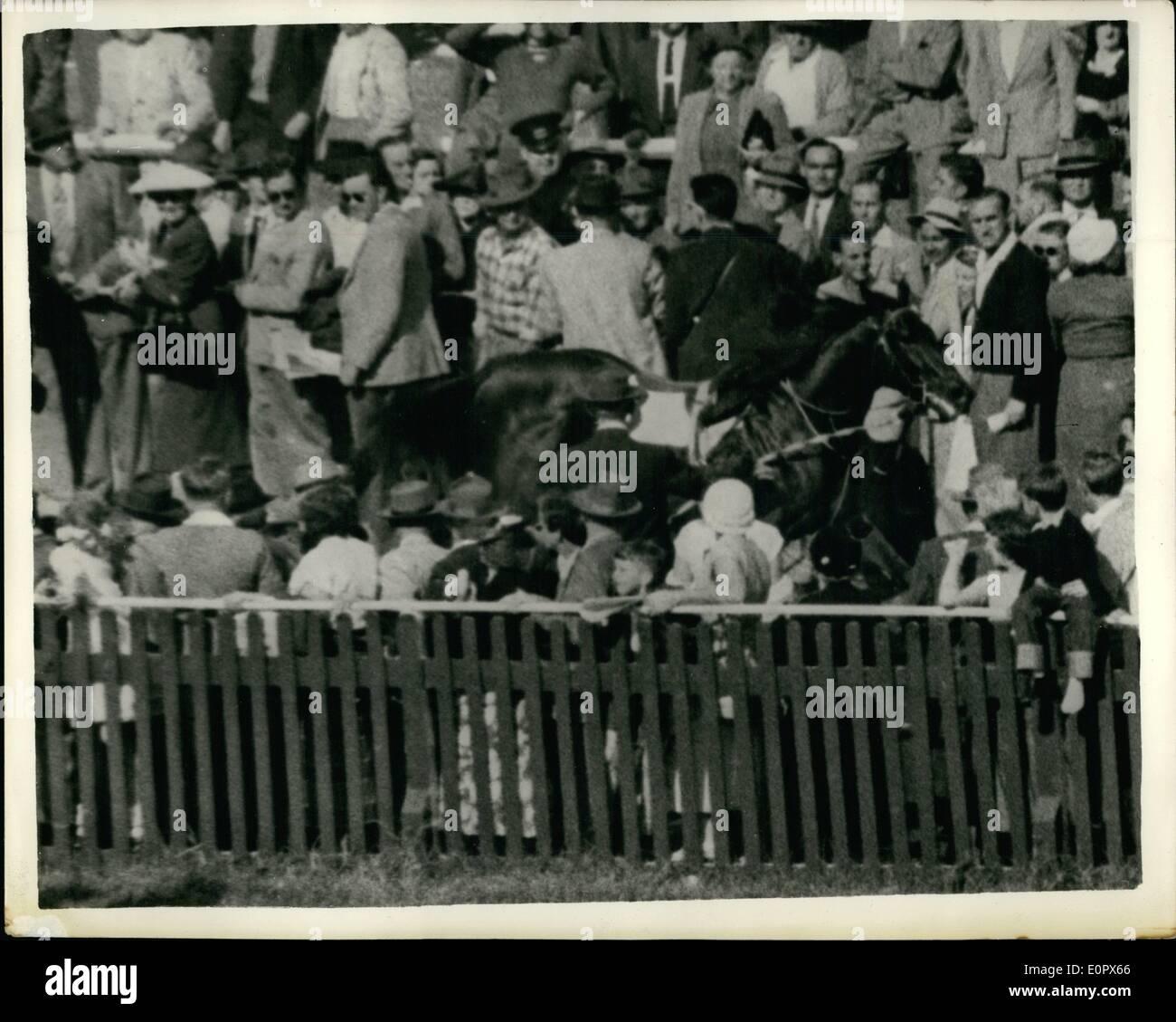 Abril 04, 1957 - Caballo corre furiosamente en el Hipódromo australiano: ''estacas de Oro'', criados y tiró a su jinete al alinearse para el inicio de la desventaja de Wentworth, al Ranwick Rececourse, Australia y atornillados durante el torneo. Durante el galope el caballo resbaló y sorambled bajo la rampa, y racegoers soattered en todas direcciones. Sorprendentemente nadie resultó herido, y estacas de oro fue finalmente atrapado aparentemente nada peor para su escapó. La imagen muestra: Uno racegoer intenta saltar la valla y otros guiones para la seguridad como el caballo de carreras desbocado ''estacas de Oro'' los pernos a través de la multitud en Randwick Imagen De Stock