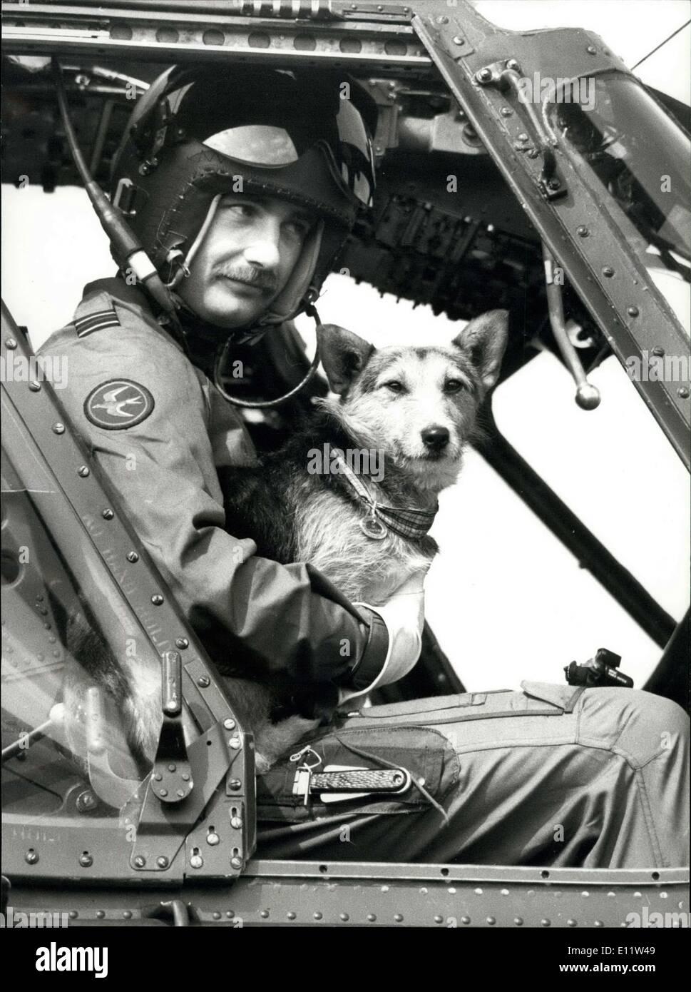 Abril 09, 1980 - El desfile de guardias galeses para decir adiós a las ratas: En Elizabeth cuarteles, campamentos de Pirbright, Brookwood' de Woking (Surrey), hoy el 1er Batallón de guardias galeses fueron en un desfile para decir adiós a las ratas las mestizas (Corgie/Terrier?), que ha sido retirado en el consejo veterinario, ratas está pensado para ser de 8 años y gran parte de su vida ha transcurrido con las compañías en Crossmaglen roulement sur de Armagh, en Irlanda del Norte. En diciembre del año pasado fue condecorado con la medalla de oro para perros Pro el perro más dedicado al servicio y fue dado permiso para volver a Londres para la presentación Foto de stock