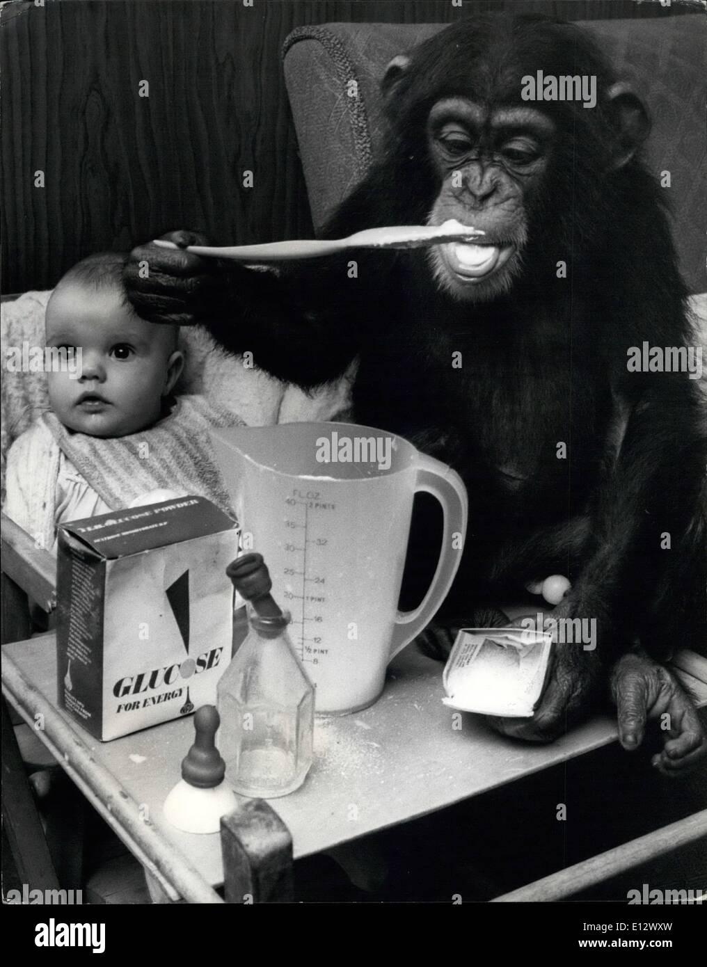 El 25 de febrero, 2012 - LAS COMIDAS PUEDE SIGNIFICAR MONKEY BUSINESS: Todo niño cuya familia vive en un zoo es cierta para involucrarse en algún tipo de negocio de mono en algún momento u otro. Y desde Judy, un chimpancé de dos años Southam Granja Zoológico en Warwickshire, se mudó con el Sr. y la Sra. Leslie garras - sus 6 mes de edad-nieta Tracey-Jane ha encontrado que la vida está llena de monkey business. Para Judy ha desarrollado un interés definido en el biberón y hace una excelente ''Nana'' para jóvenes Tracey-Jane. 4. Después de mezclar la comida Judy lo intente. Sólo para asegurarse de su perfecto para Tracey-Jane. Foto de stock