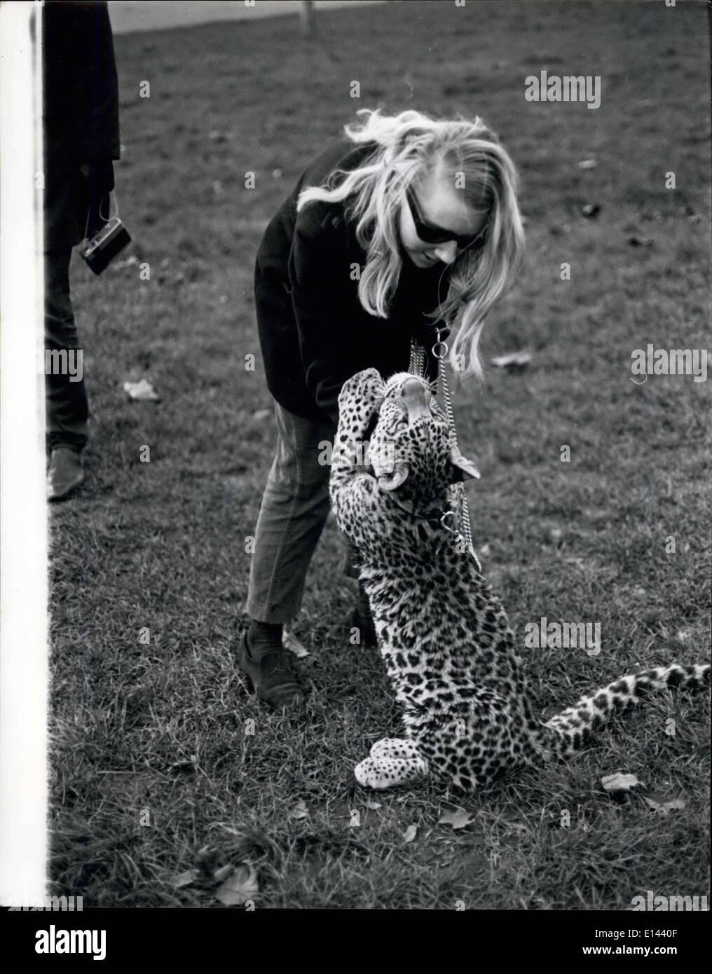04 de abril de 2012 - 2.5 Michael es un joven leopardo amigable - es solo pequeño en este momento - pero pronto Foto de stock