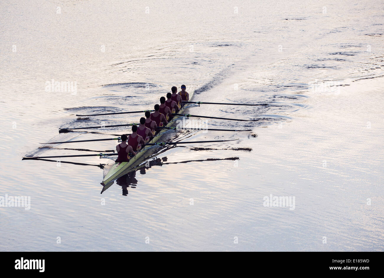 Equipo de remo remo cráneo en el lago Imagen De Stock