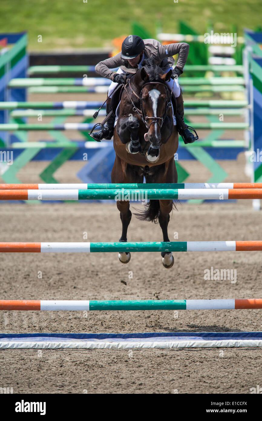 Golpea en el Hudson Show Jumping, Saugerties, NY Imagen De Stock