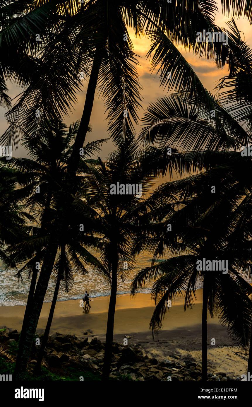 Indios increíbles playas, Playa Negra, Varkala. En Kerala, India. Imagen De Stock