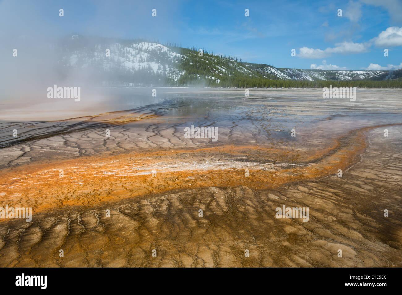 Colorido las bacterias crecen en el desbordamiento de la Grand Prismatic Spring. El Parque Nacional Yellowstone, Wyoming, Estados Unidos. Foto de stock
