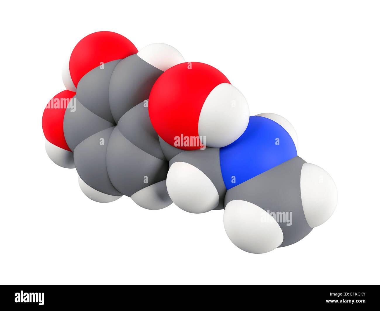 Molécula De La Hormona Adrenalina Equipo Ilustraciones