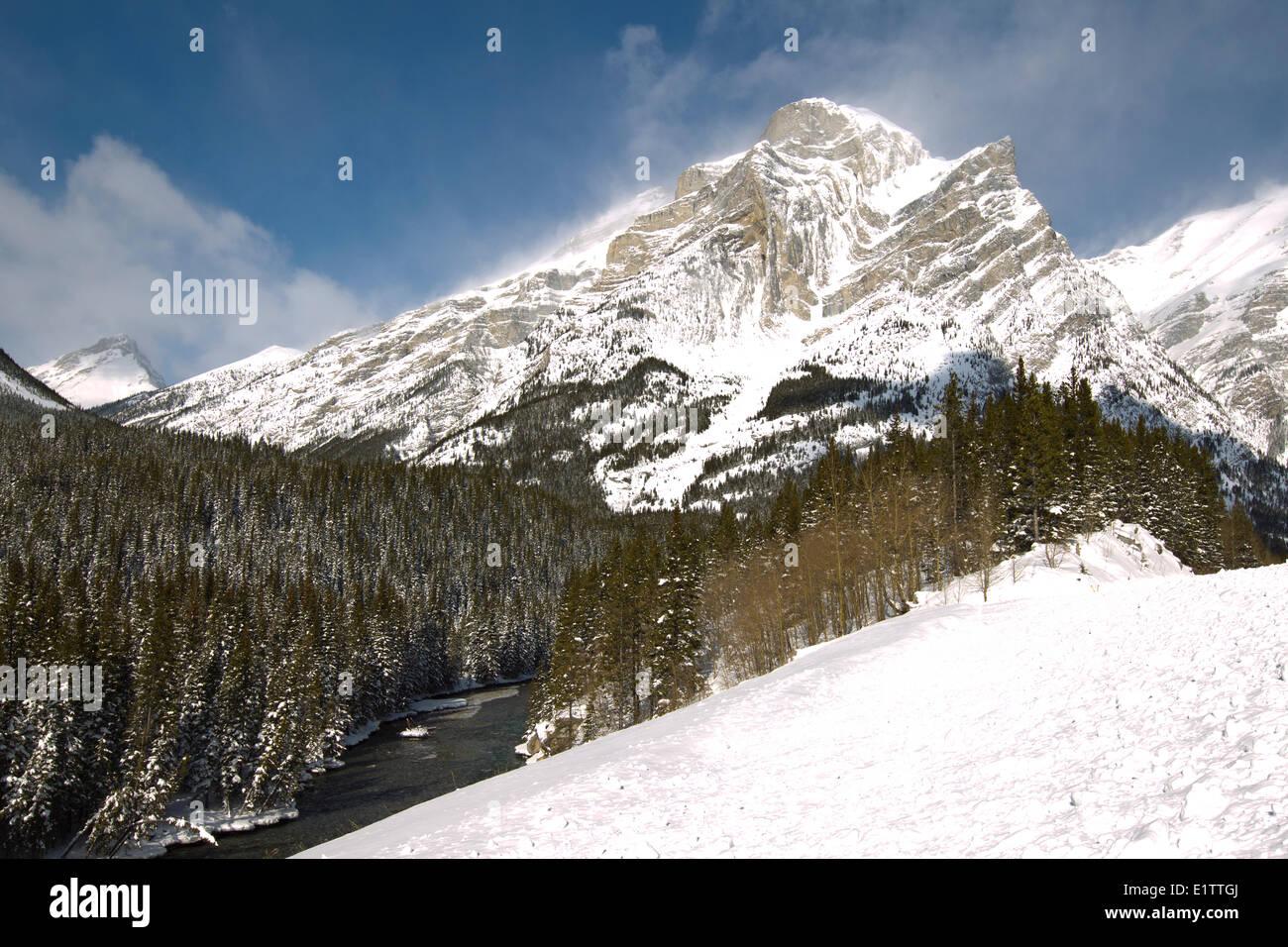 Ribbon Creek, el Parque Provincial de Kananaskis, Alberta Imagen De Stock