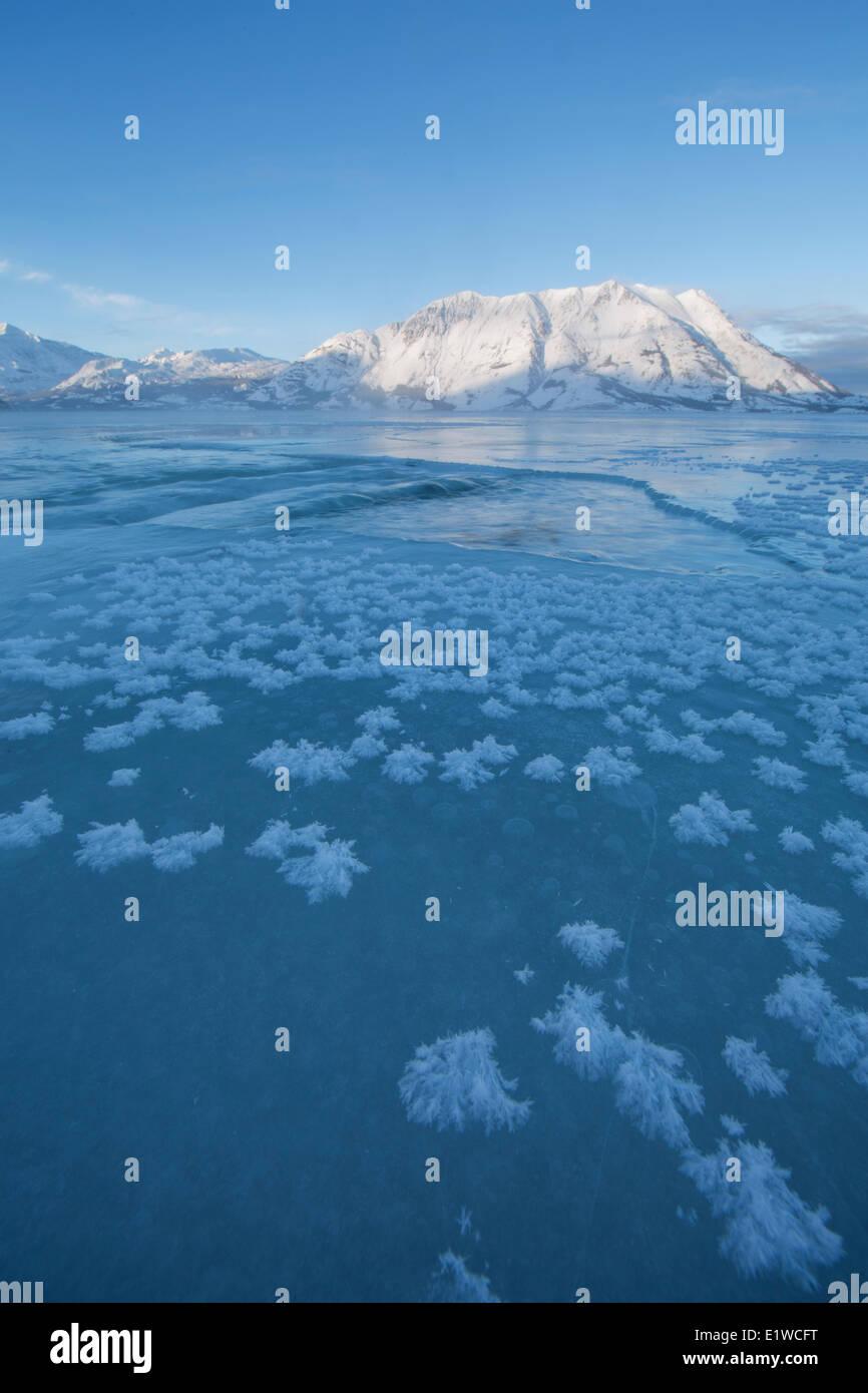 Crecen los cristales de hielo en la superficie congelada Kluane Lake con ovejas iluminación de montaña en la distancia. Kluane National Park Foto de stock