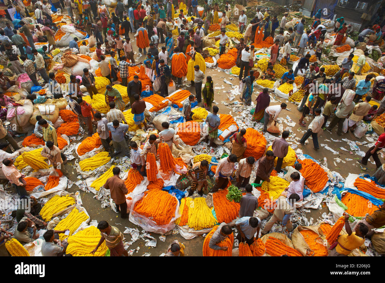 La India, Bengala Occidental, Kolkata, Calcuta, el mercado de flores Mullik Ghat Imagen De Stock