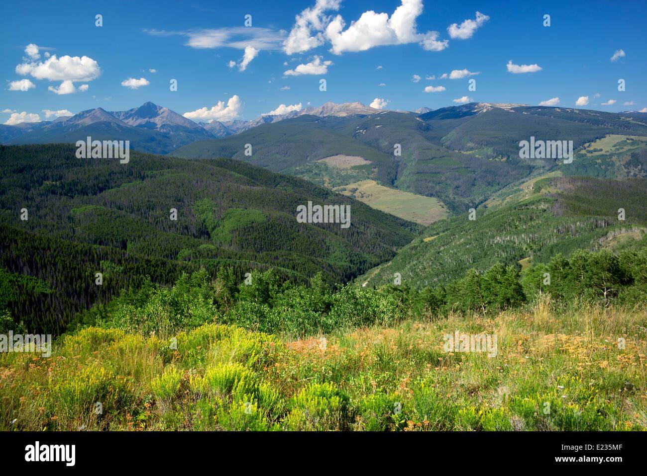 Los Sawatch Range con rabbitbrush y nubes. Cerca de Vail, Colorado Imagen De Stock