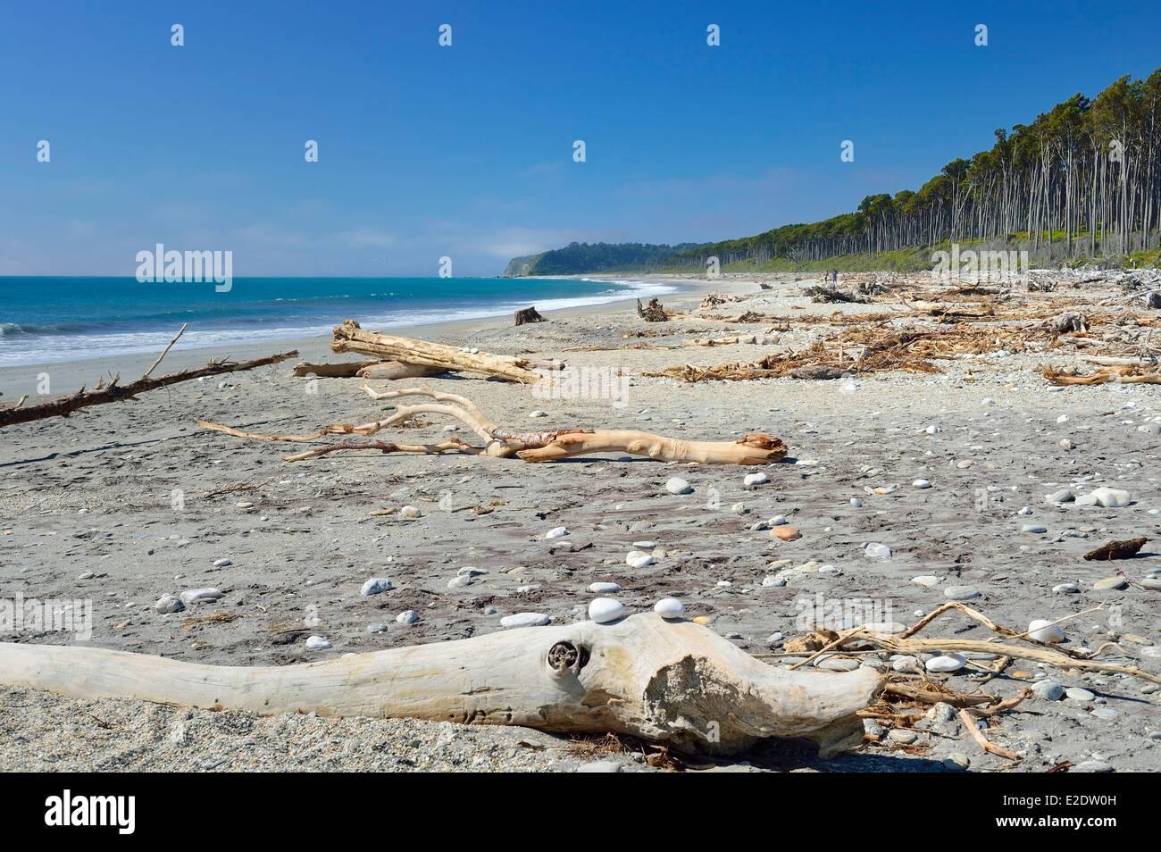Nueva Zelanda, Isla del Sur, región de la costa oeste de la Bahía de Bruce en el Mar de Tasmania Foto de stock