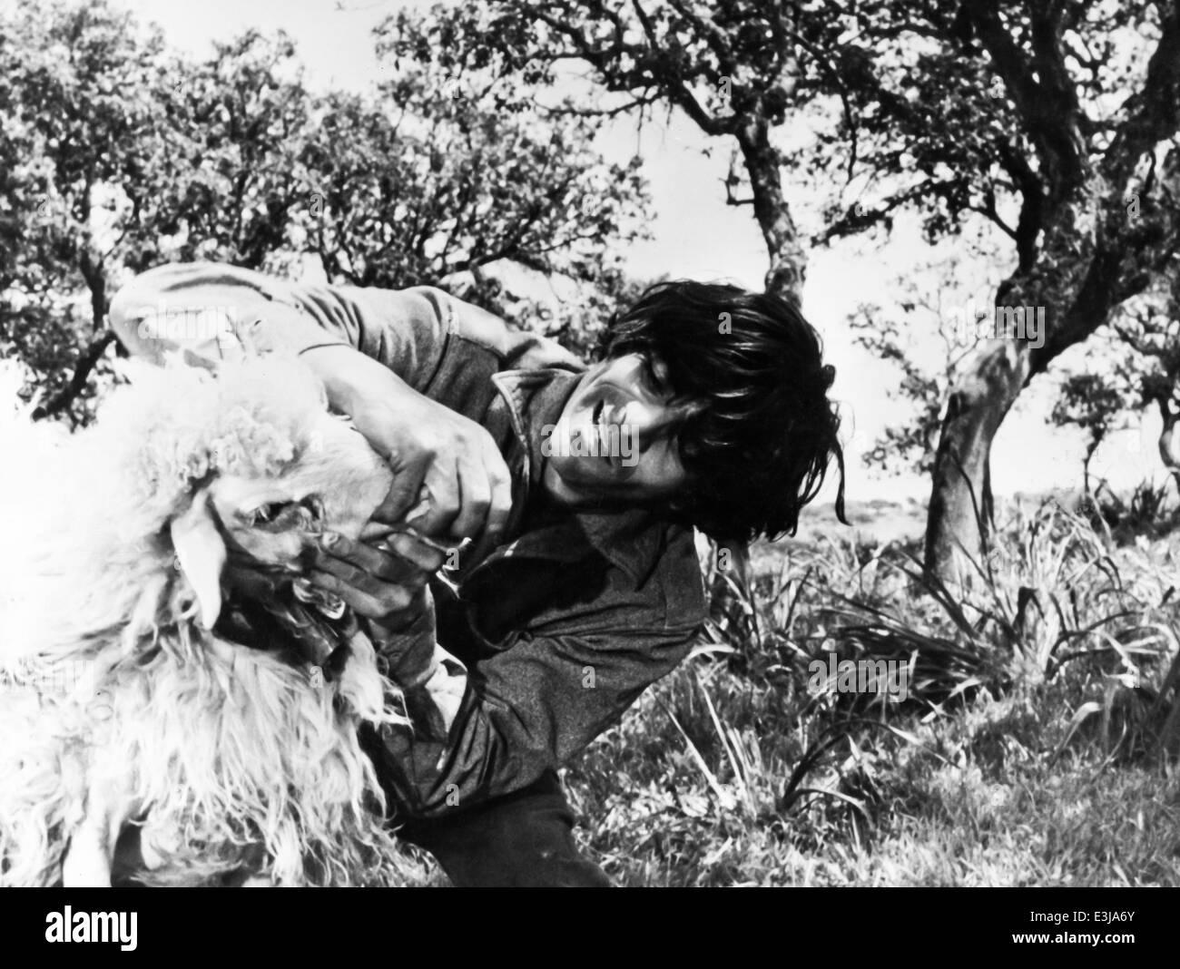 Gavino ledda,ybris,1983 Imagen De Stock