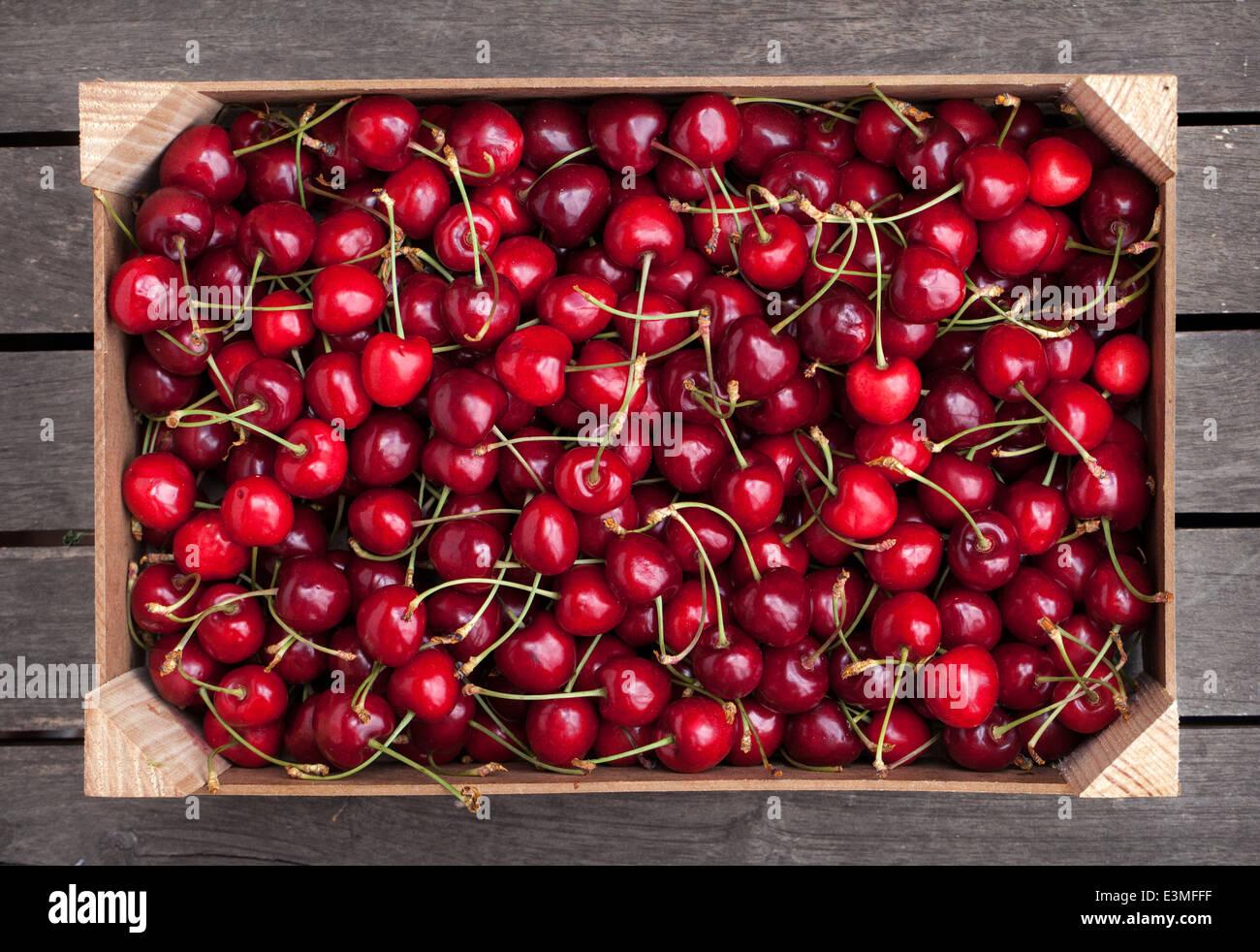 Caja de madera de las cerezas frescas Foto de stock