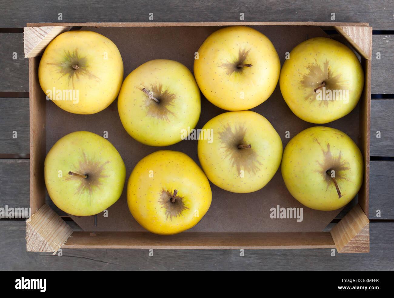 Caja de madera de fresco Golden Delicious Foto de stock