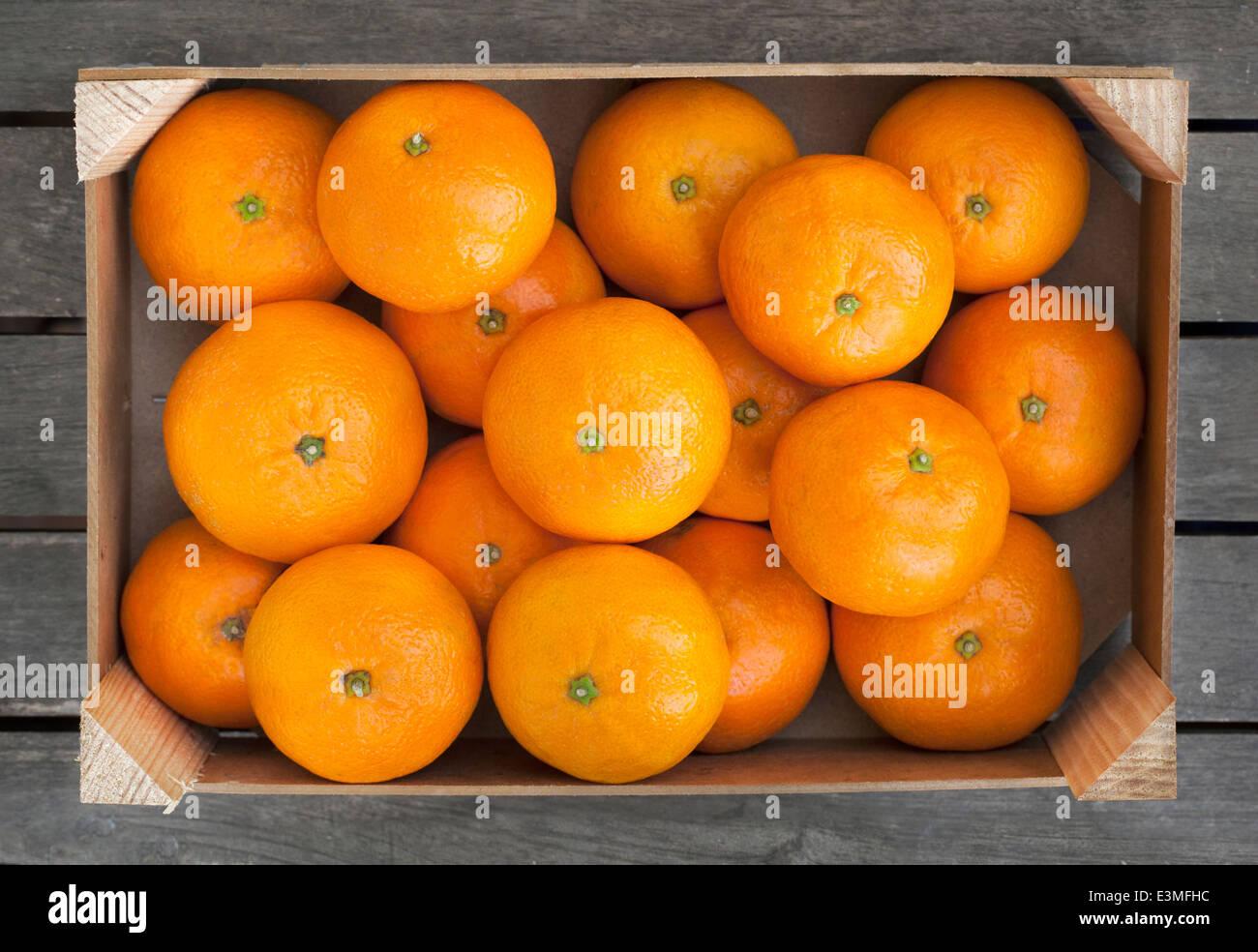 Caja de madera de las mandarinas frescas Foto de stock