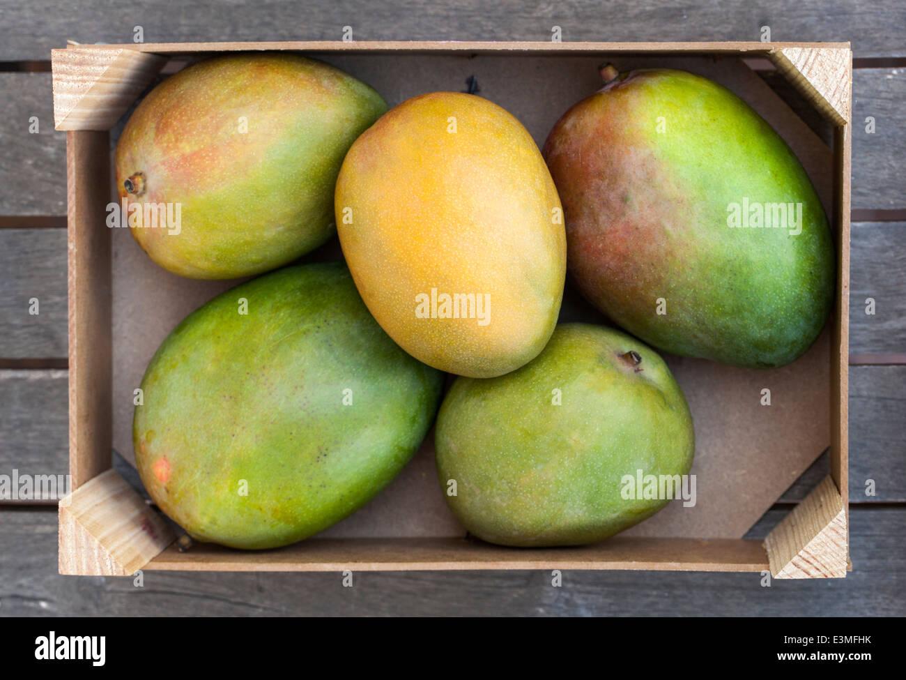 Caja de madera de mango fresco Foto de stock