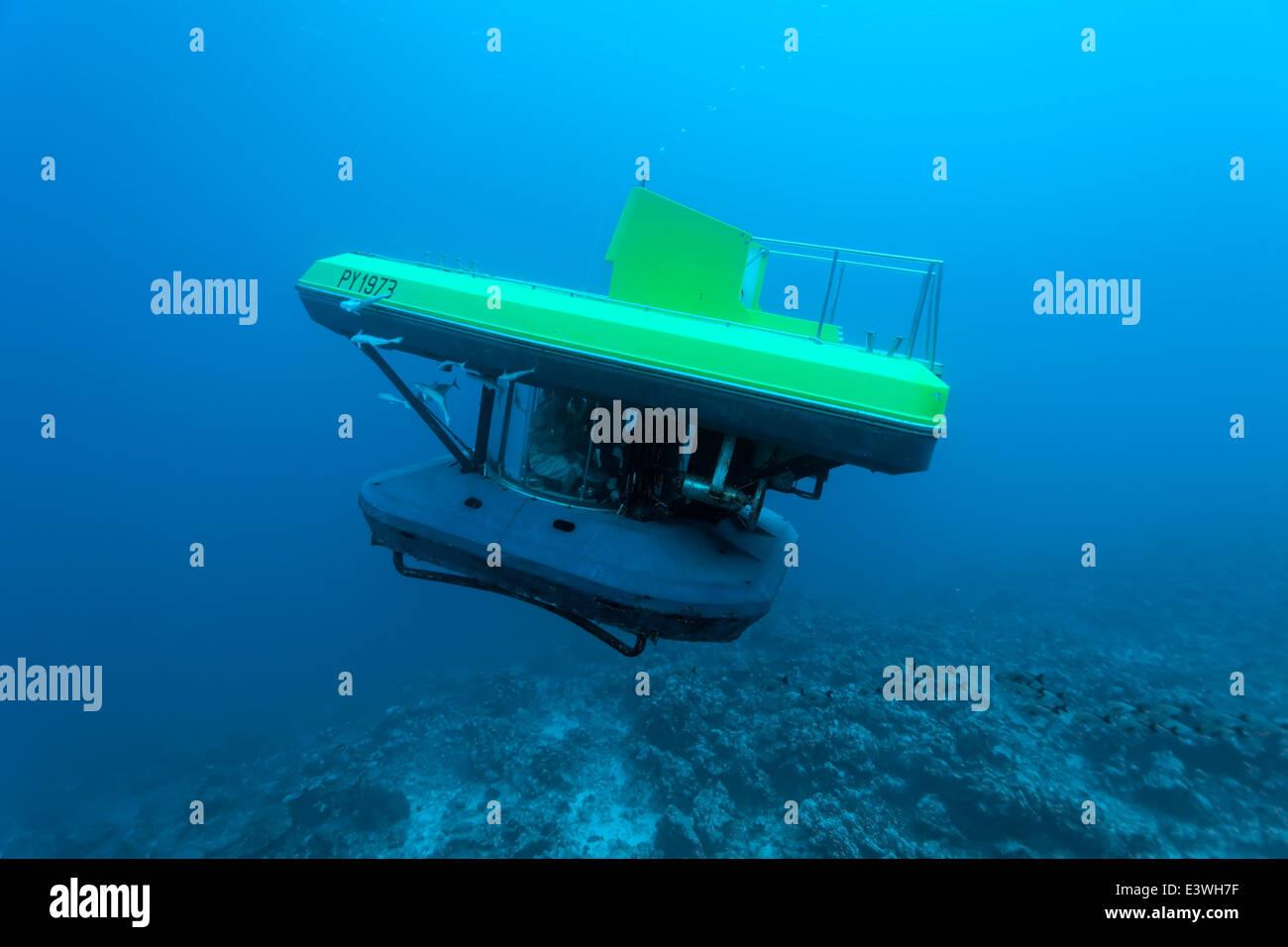 Submarino de turistas, bucear en un arrecife de coral, Bora Bora, Islas de Sotavento, las Islas de la Sociedad, Imagen De Stock