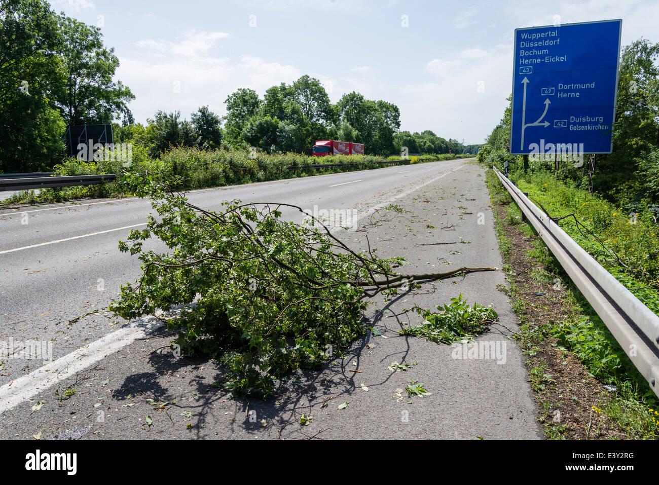 Las ramas caídas sentar en la autopista A43 en Herne, área de Ruhr, Alemania Occidental, después de la severa frente de tormenta Ela Foto de stock